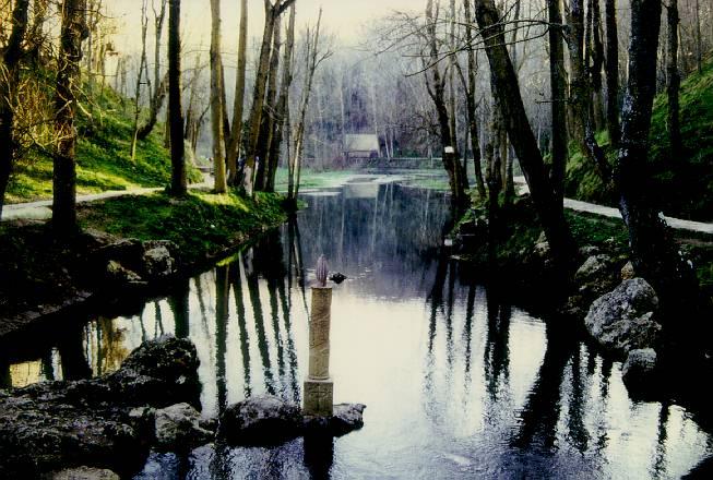 de un rio y Bosque galeria