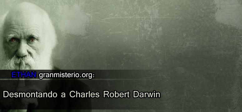 darwin bien