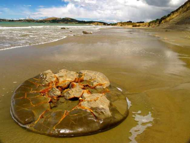 a-sand-smoothed-half-moeraki-boulder-up-the-beach-a-mile-from-the-main-group
