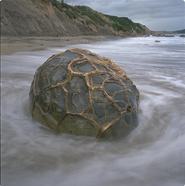 moeraki-boulder-with-strange-cover