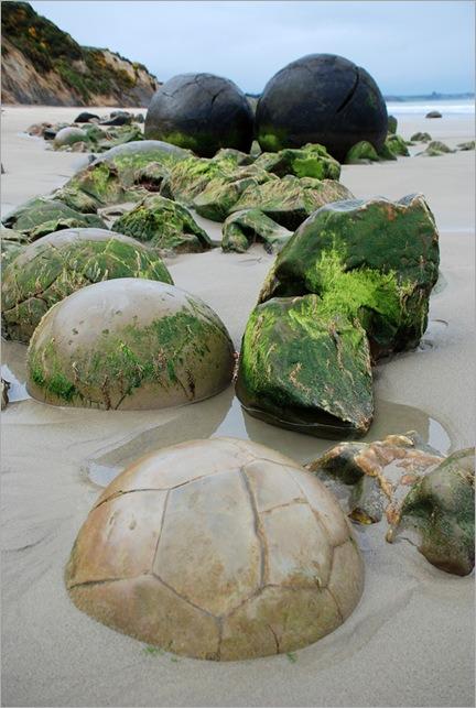 mysterious-moeraki-boulders_thumb4
