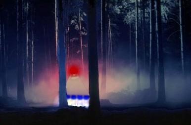 UFO in Rendlesham Forest