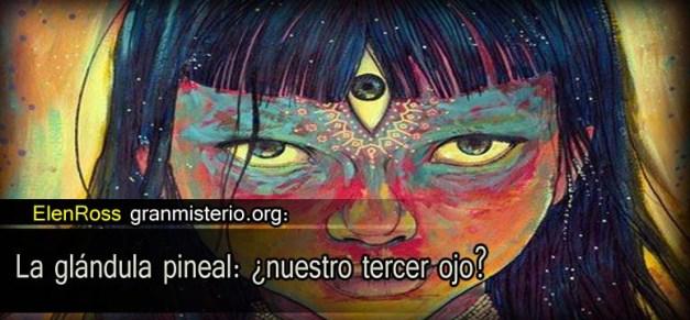 La glándula pineal: ¿nuestro tercer ojo? Elene_pineal