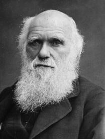 19562 charles darwin - El fin de la teoria de Darwin?